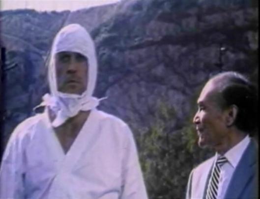 white ninja and asian guy