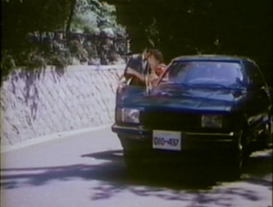 cop putting woman in car