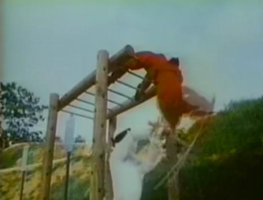 ninjas fighting on monkey bars