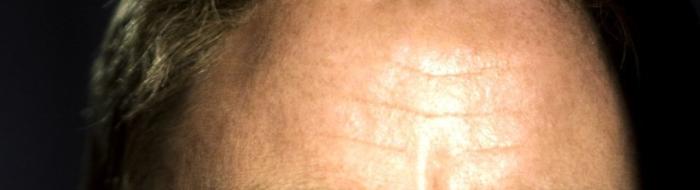 Daniel Craig's shiny head in Skyfall